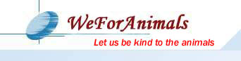 www.weforanimals.com - let us be kind to the animals
